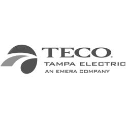 teco-electric